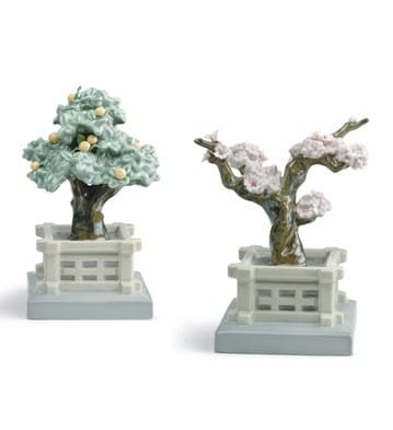 Japanese Tree Pots (Mandarine and Cherry)