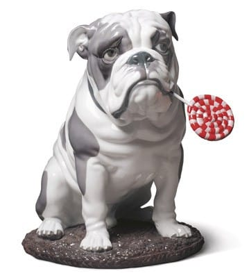Bulldog with Lollipop